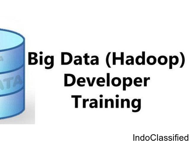 Nextgen Scholars- The Pioneer Big Data Hadoop Training Institute in Delhi