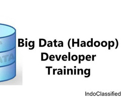 Nextgen Scholars- The Pioneer Big Data Hadoop Training Institute in Delhi