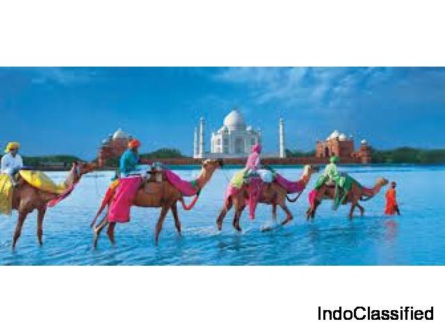 Explore india through a magnificent culture tour with Divine India Memoriez