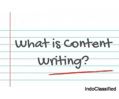 Content Writing Training in Delhi by Govt Approved Academy