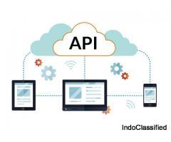 Best Api Integration Development Company