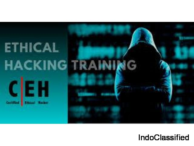 Ethical Hacking Courses Mumbai | Ethical Hacking Training| Skynet Secure Solutions