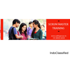 Scrum Master Training in Chennai