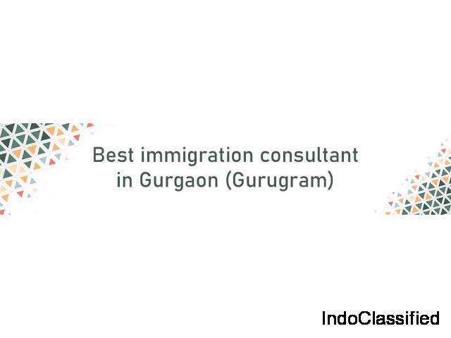 Best immigration consultant in Gurugram | Best Immigration Consultants