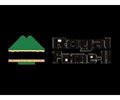 Motiaz Royal Fame Mohali