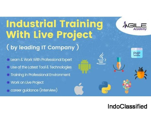 Get the Live Project Training at Agile Academy on all IT Courses with 100% Job Placement