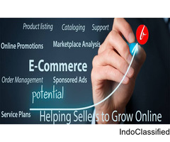Ecommerce marketplace services for amazon and flipkart