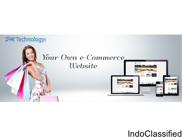 Professional Custom e-Commerce Website Solutions