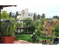 Terrace Garden Design Noida