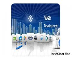 Hire Website Developer in India