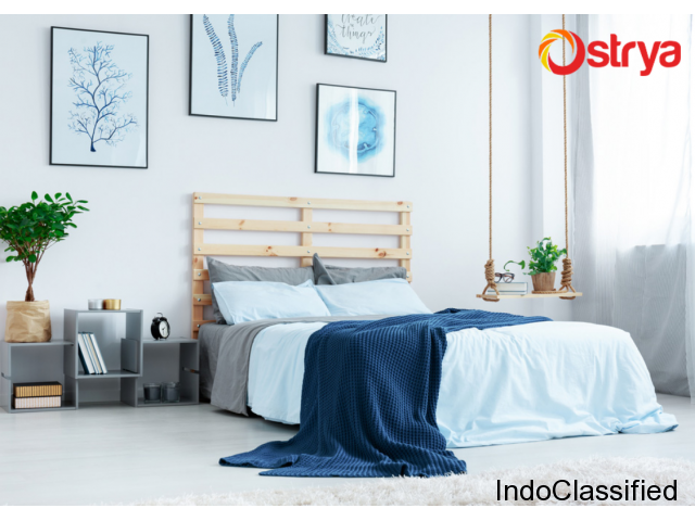 Perfect Interior Designing Solutions in Kerala - Ostrya Home Interiors