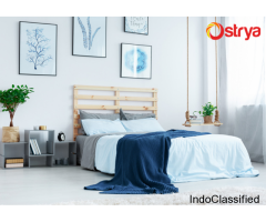 Perfect Interior Designing Solutions in Kerala - Ostrya Home Interiors
