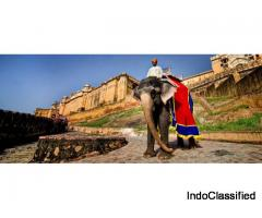 Affordable Rajasthan tour with hotel reservation service, car rental service from Totaltour India
