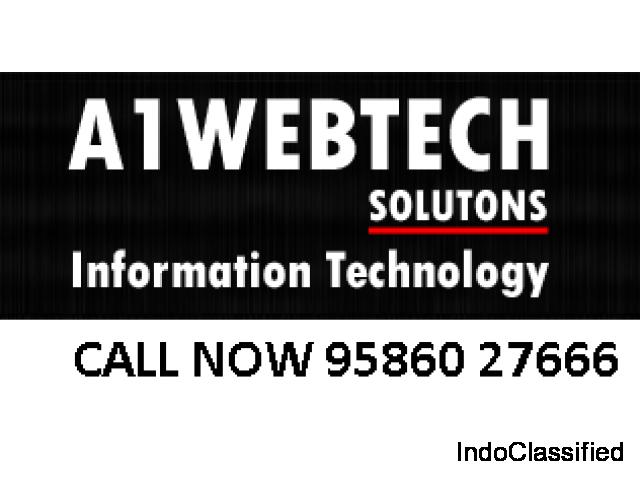 Web Design SEO Consultant India SEO Company