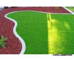 Artificial Grass Faridabad
