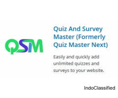Integrate advertising into your quiz to make money with the WordPress quiz plugin