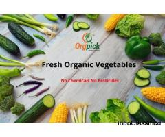 Fresh Organic Vegetables Online Shopping in Pune