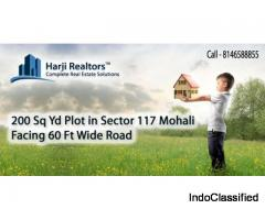 Real Estate Mohali