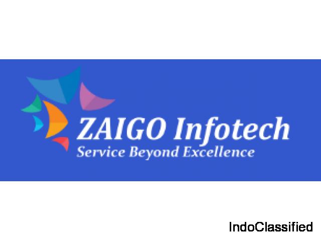 Custom Web Development Services USA - Zaigo Infotech