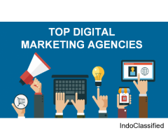 Digital Marketing Company in Delhi Ncr - SEO, PPC, SMO, SEM