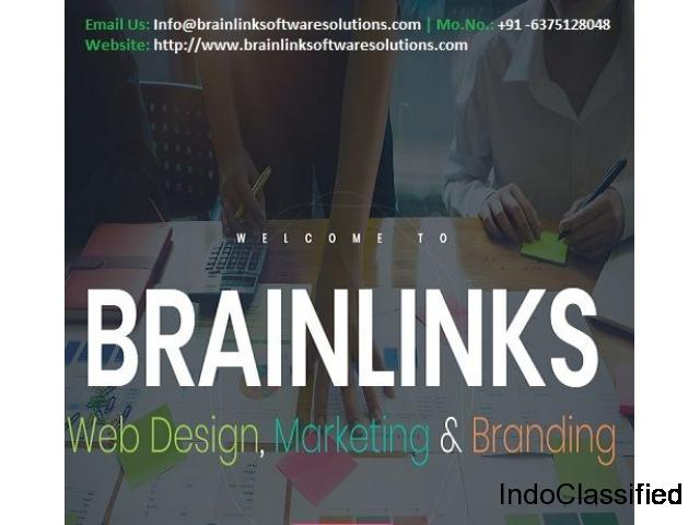 Web Design Company in Jaipur, India - BrainLink Software Solutions