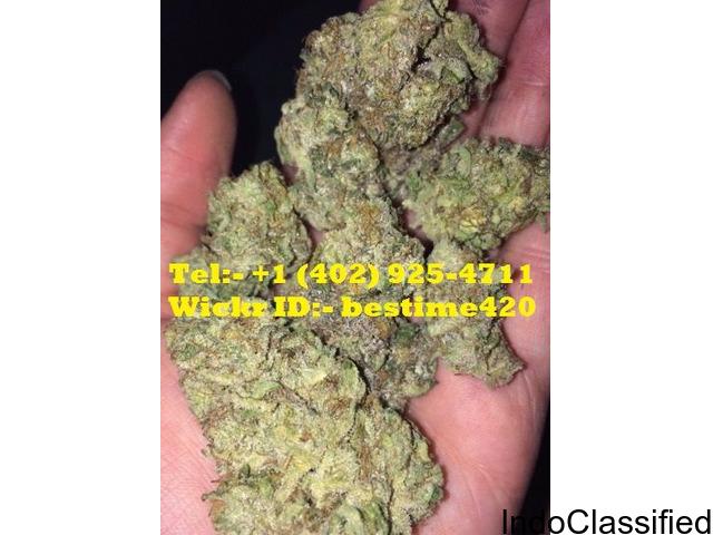 Legit Source to Order Top Shelf Medical Marijuana Strains, Concetrates, Edibles & CBD Oil.