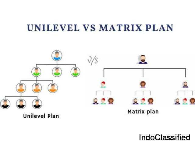 Comparison of Unilevel and Matrix compensation plan – MLM software Chennai