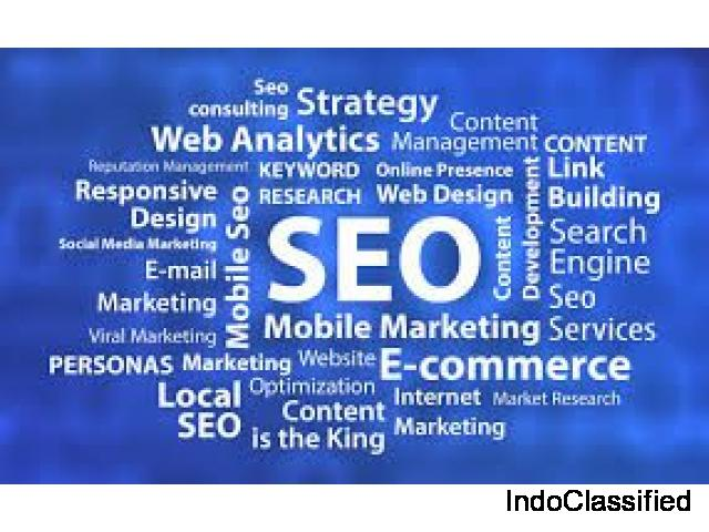 Web design and seo services by idm6