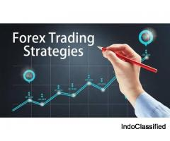 Open A Forex Account | Forex Trading Live Account With NimbleMarkets