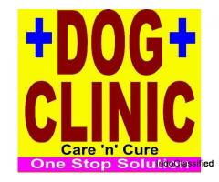 Dog Clinic In Pratap Nagar Jaipur