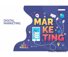 started new service as digital marketing