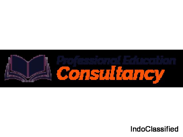 Professional Education Consultancy