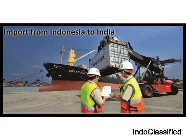 Imports of India from Indonesia