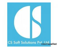 IT Services offered by CSSOFTSOLUTIONS