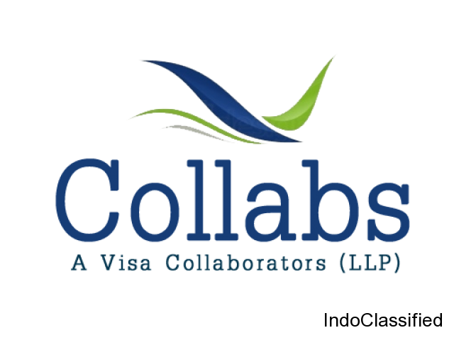 Travel Visa Consultants in Delhi