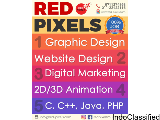 Best Web Design and Development in Delhi-NCR