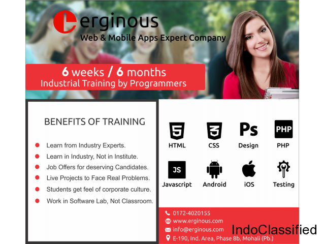 Best Web Designing Training Course in Mohali | Chandigarh