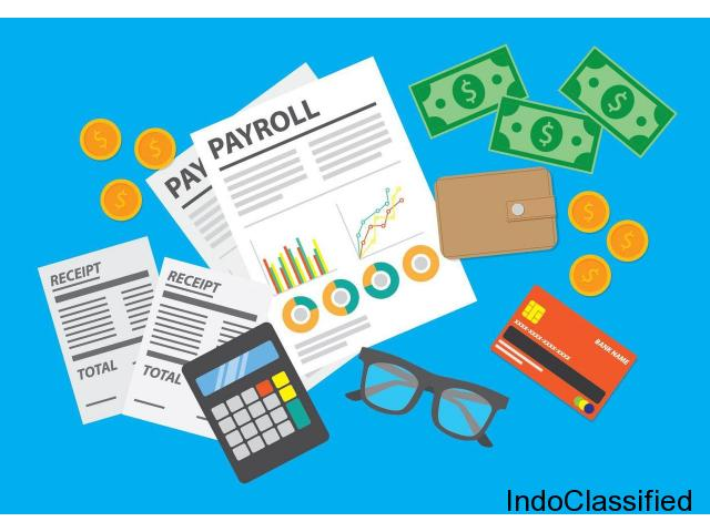 Payroll Outsourcing Services in India Delhi, Payroll Software