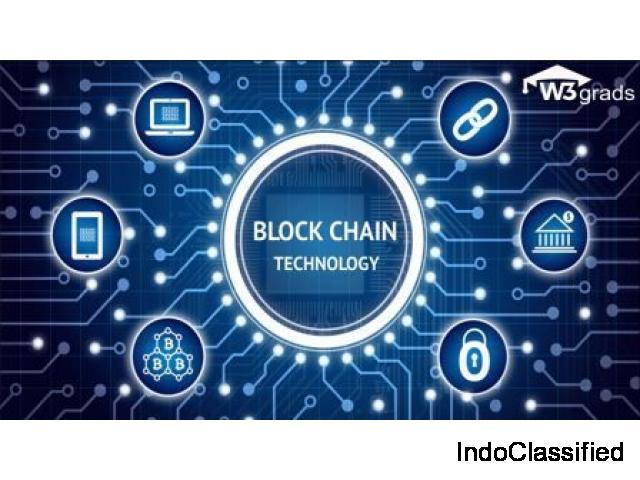 Professional Blockchain Development Training