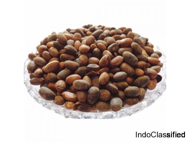 Buy IndianJadiBooti Jamalghota Seed Online – @240