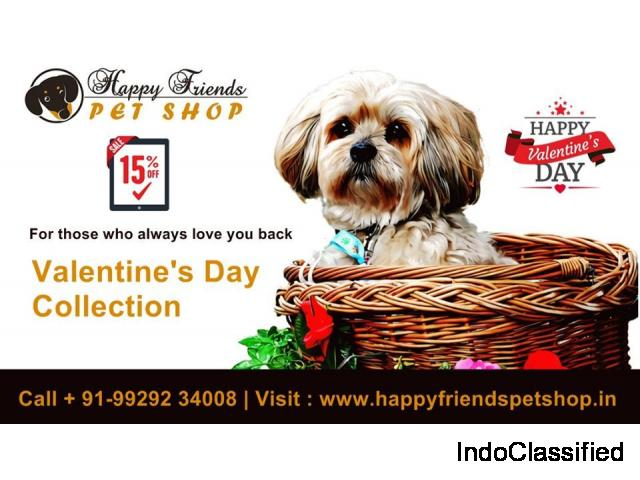 Get 15 % Off On Best Valentine's Day Gift