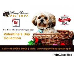 Get 15 % Off On Best Valentine's Day Gift