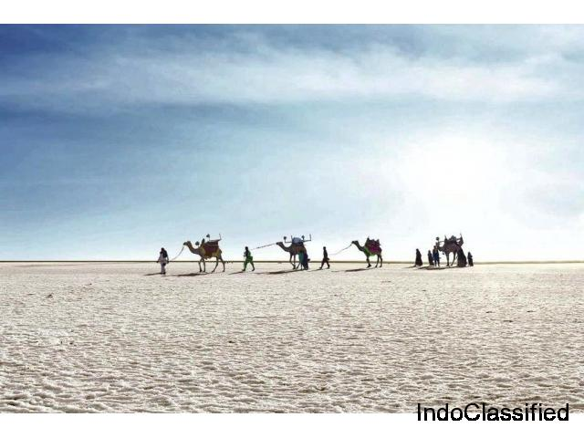 Rann of Kutch known as The white salt Desert