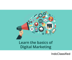 Digital Marketing In Moradabad
