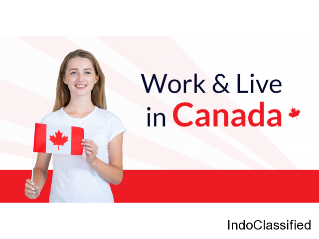 Do You Want to Work & Live in Canada?