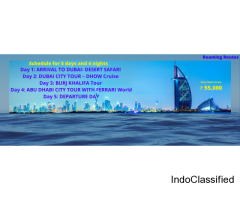 Offer for 5 days and 4 nights Dubai tour package only at 55000/-