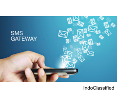 Looking For The Best SMS Service Provider in UAE?