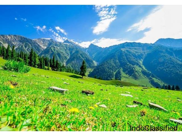 Magical Kashmir Honeymoon Package