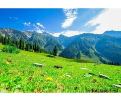 Magical Kashmir Honeymoon Package