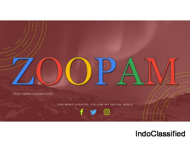 Cheap Website Design Company In Mumbai Zoopam .